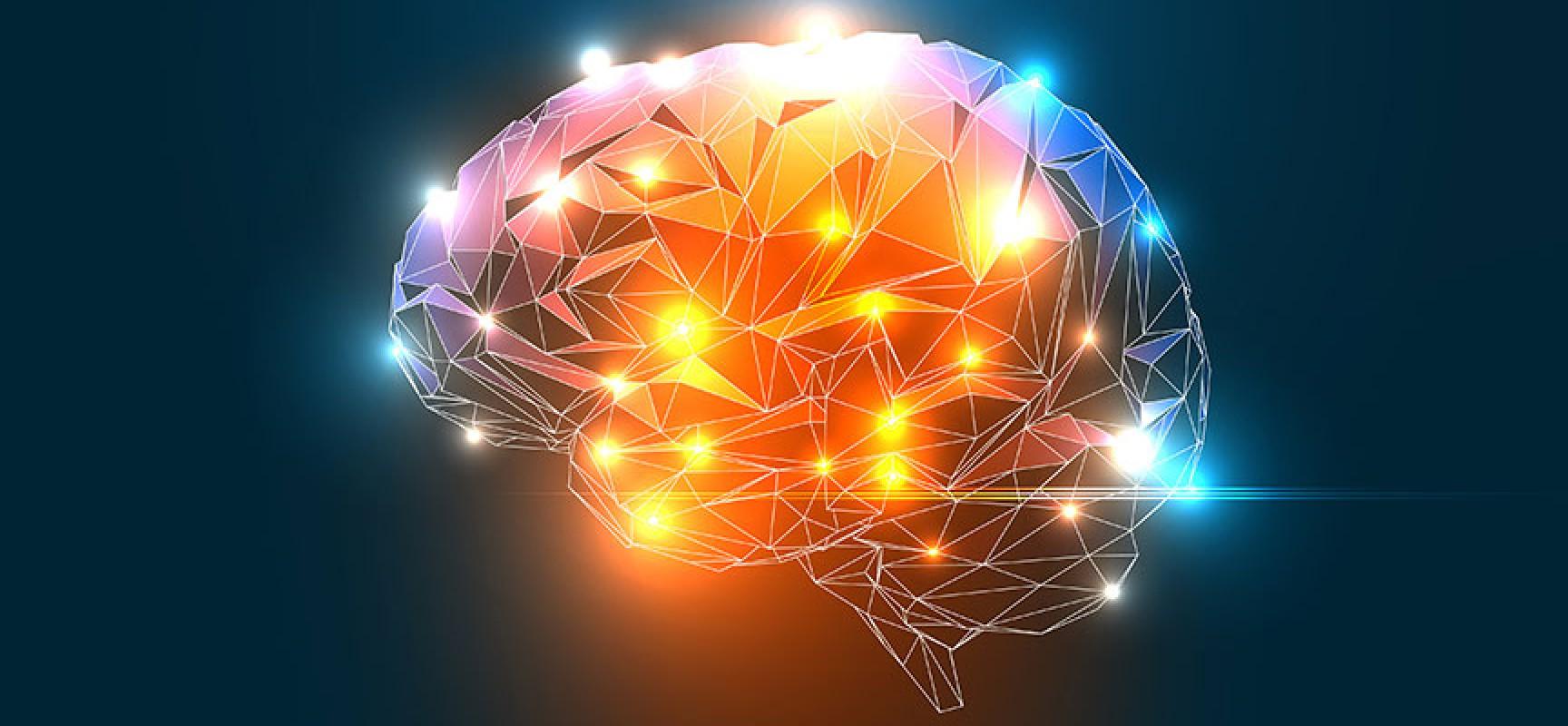22 ciekawostki na temat mózgu, o których mogłeś nie słyszeć